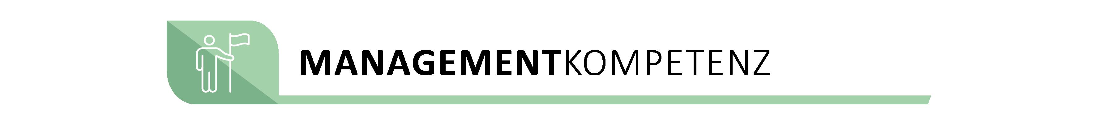 Zwischengrafik_Managementkompetenz-Pastell